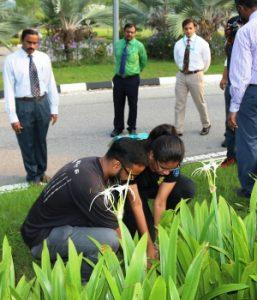 AIMST Tree Planting 05
